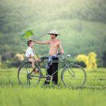 Comment organiser une balade de vélo en famille ?
